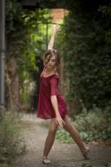Trento Dress